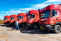 Fruytier Group transporteert rondhout met Scania's